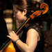 Paimpont 2018: Day 129 - Third Cello... by vignouse