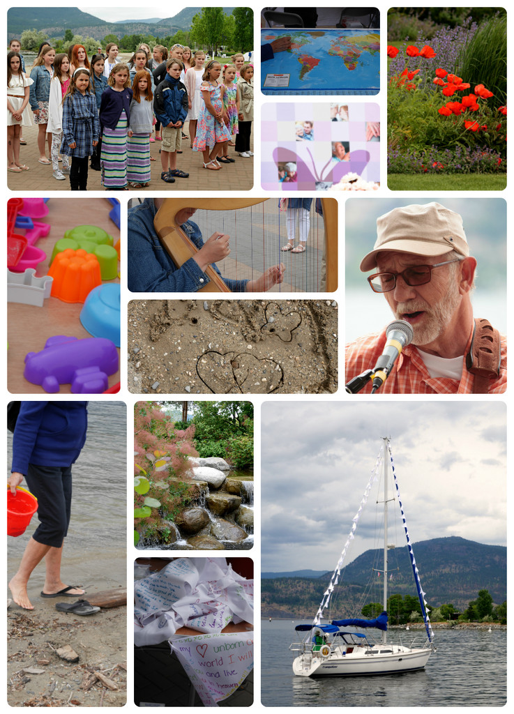 Walk of Memories by gq