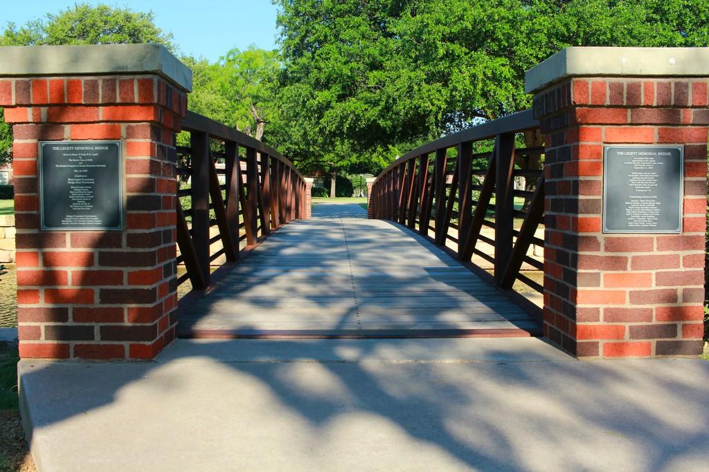 Bridge by judyc57