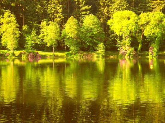 Shearwater Splendour by ajisaac