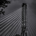 Pylon by haskar