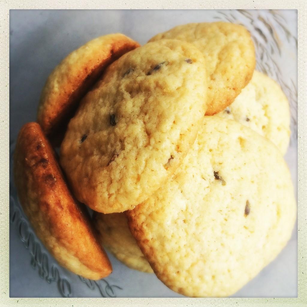 Long gone cookies by mastermek