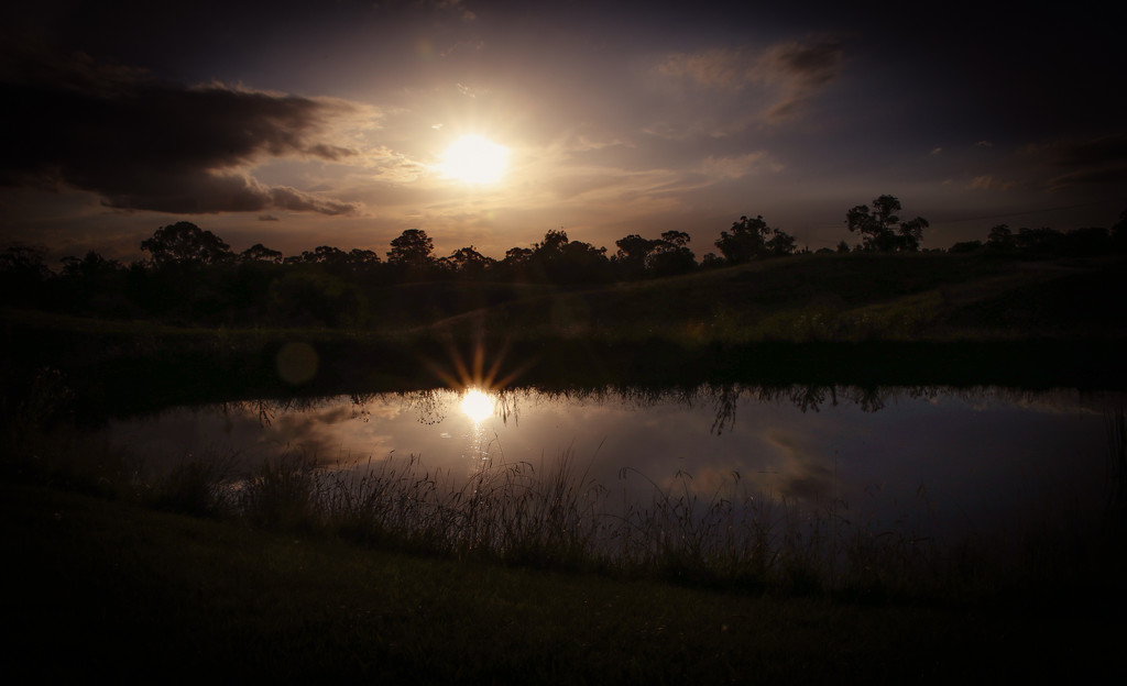 Last Rays by purdey