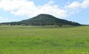 9th Jun 2018 - Colorado Countryside