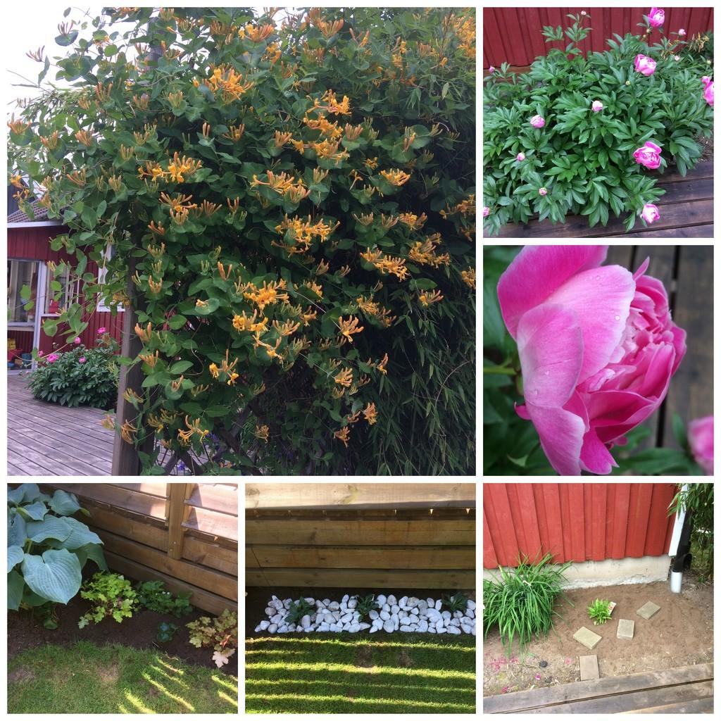 Time for the garden by huvesaker