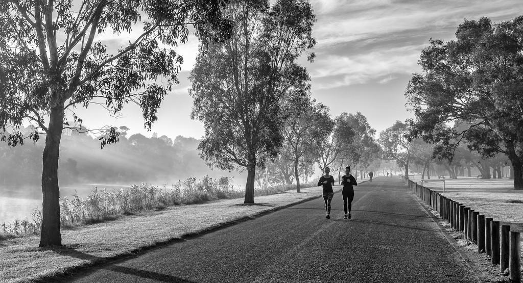 Jogging by golftragic