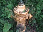 10th Jun 2018 - Fire hydrant