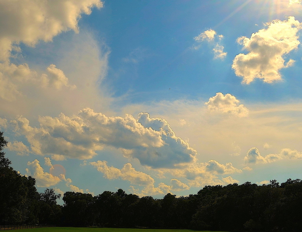 Summer clouds by congaree