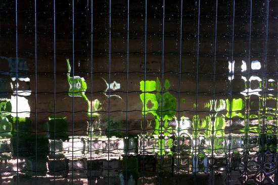 Natural window art by stimuloog