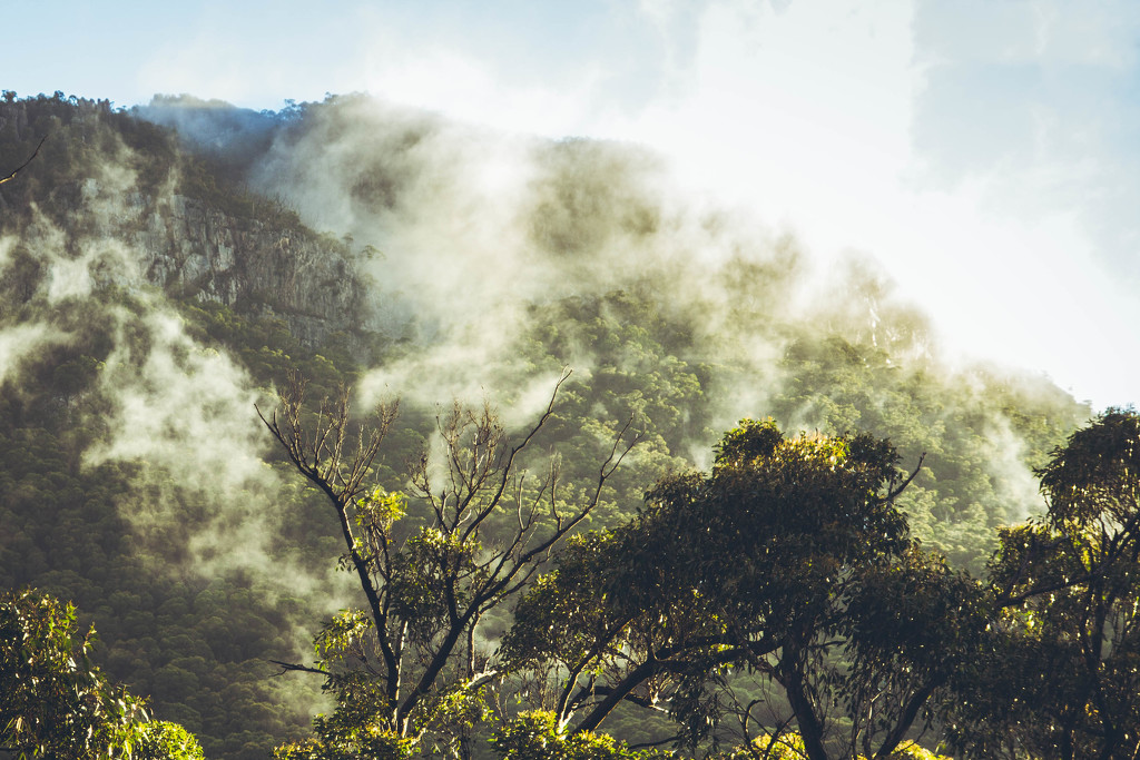 The Grampians NP by ricaa