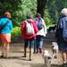 Dog walkers + 2 Visitors
