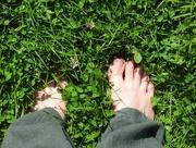 9th Jun 2018 - Grass beneath my feet