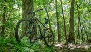 12th Jun 2018 - Mountain Biking