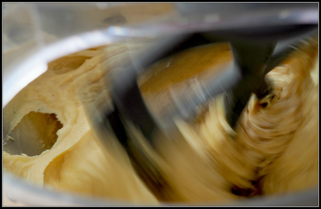 Kenwood Chef at high speed. by janemartin