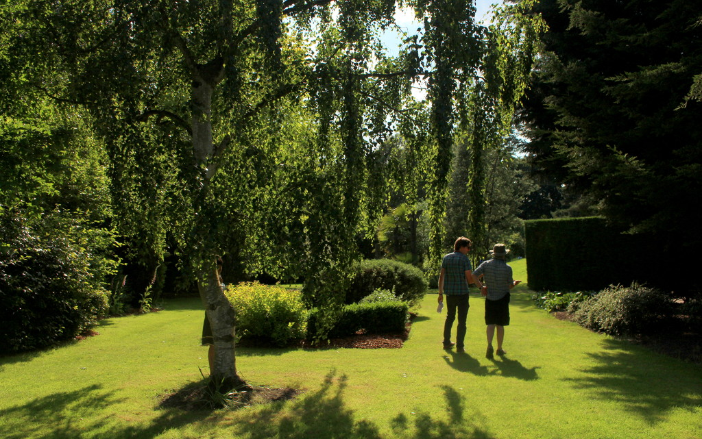 Shadows in the gardens by boxplayer