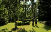 3rd Jun 2018 - Shadows in the gardens
