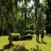 Shadows in the gardens
