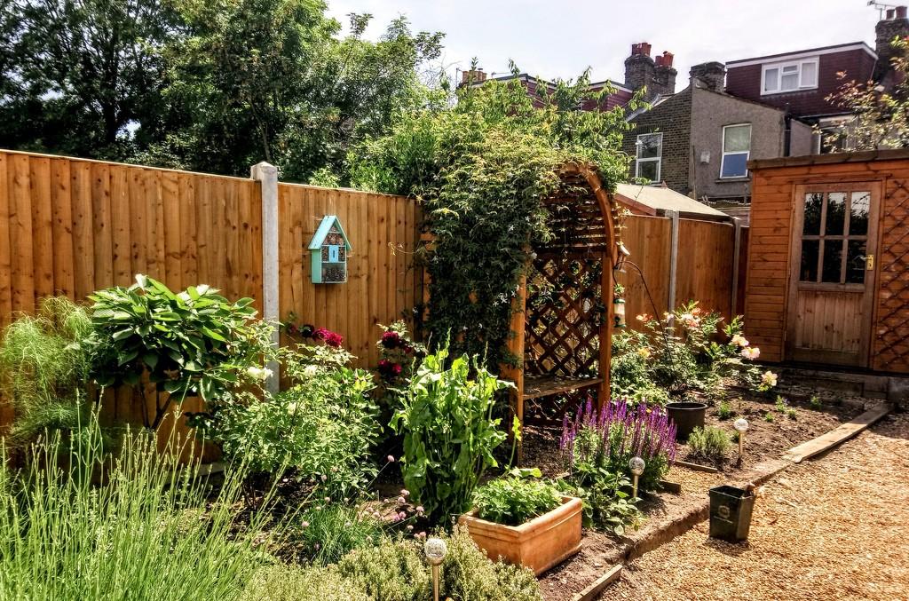 Sunny garden by boxplayer