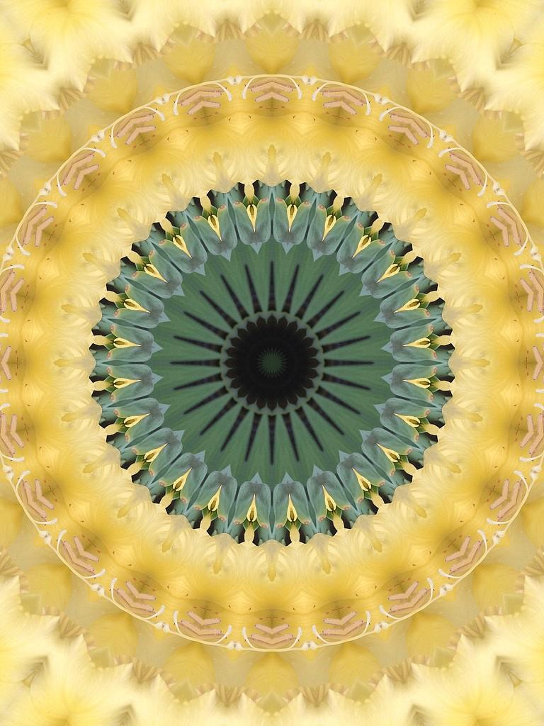 Kaleido-YellowGladiola by homeschoolmom
