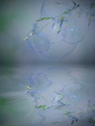 14th Jun 2018 - Bubbles and grasses.....