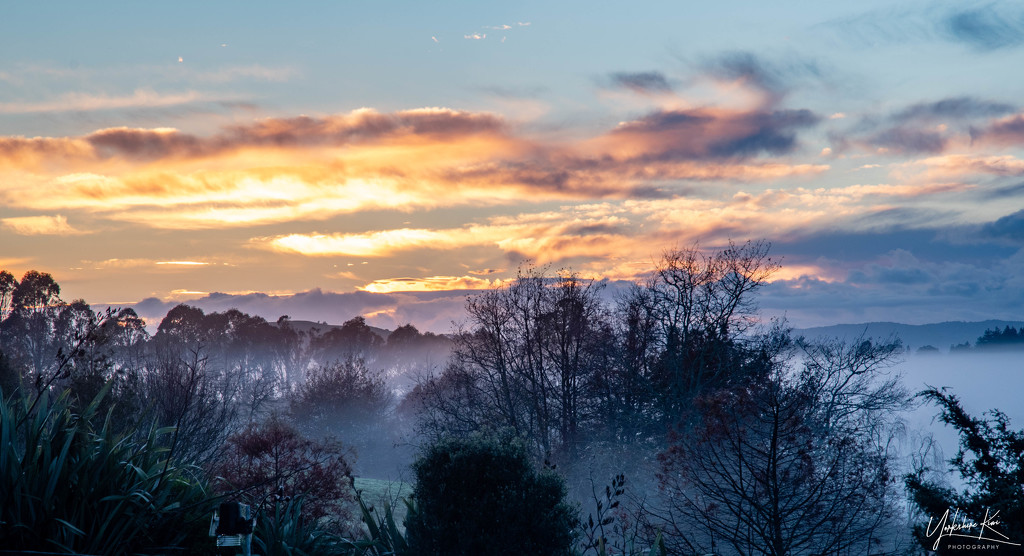 Foggy start to the day by yorkshirekiwi