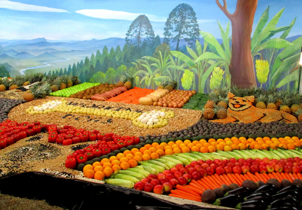Fruit & Vegetabledisplay at the Sunshine Coast Agricultural  Show today by 777margo