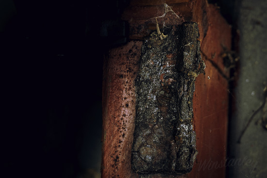 Decay 6 - Unhinged by kipper1951