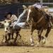 NM High School Rodeo Association - steer wrestling