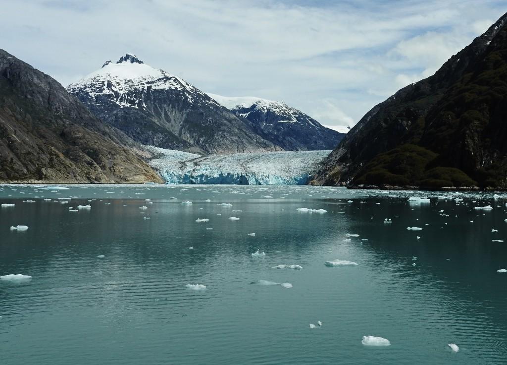 Dawe's Glacier by janeandcharlie