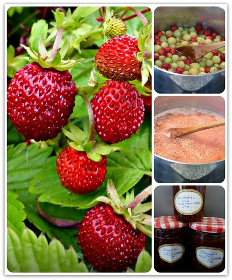 It worked!  Gooseberry and Wild Strawberry Jam by judithdeacon