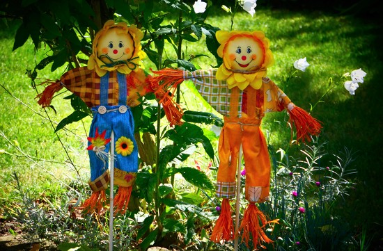 Little Scarecrows by carole_sandford