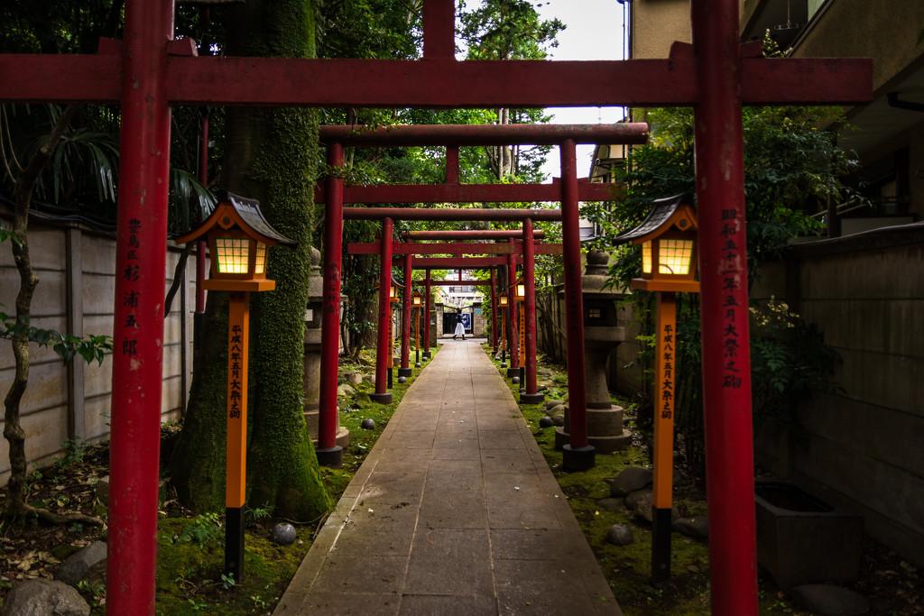 Walking past Homyoji by tokyobogue
