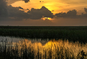 18th Jun 2018 - More Everglades sunset