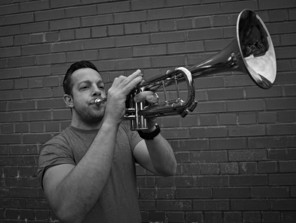 Blowing your own trumpet by phil_howcroft