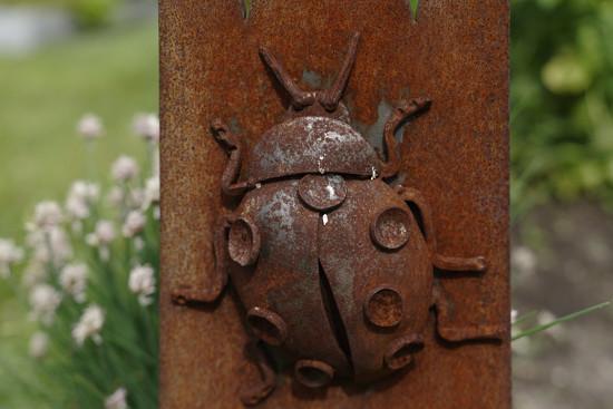 Rust Ladybug by rminer