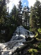 14th Jun 2018 - Mt Hood Hikes