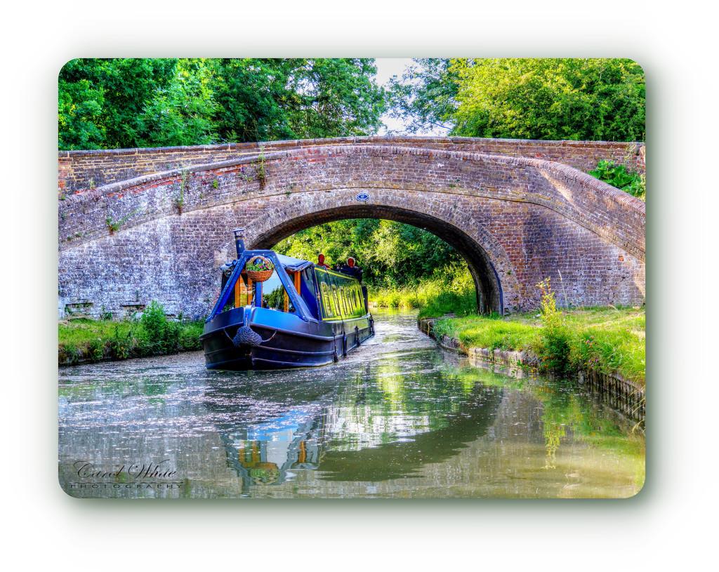 Navigating The Bridge by carolmw