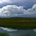 Folly Beach marsh and sky, South Carolina