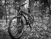 22nd Jun 2018 - Mountain Bike, in Black and White.