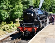 23rd Jun 2018 - Steam Train