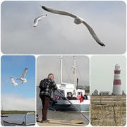 26th Jun 2018 - Orford Ness