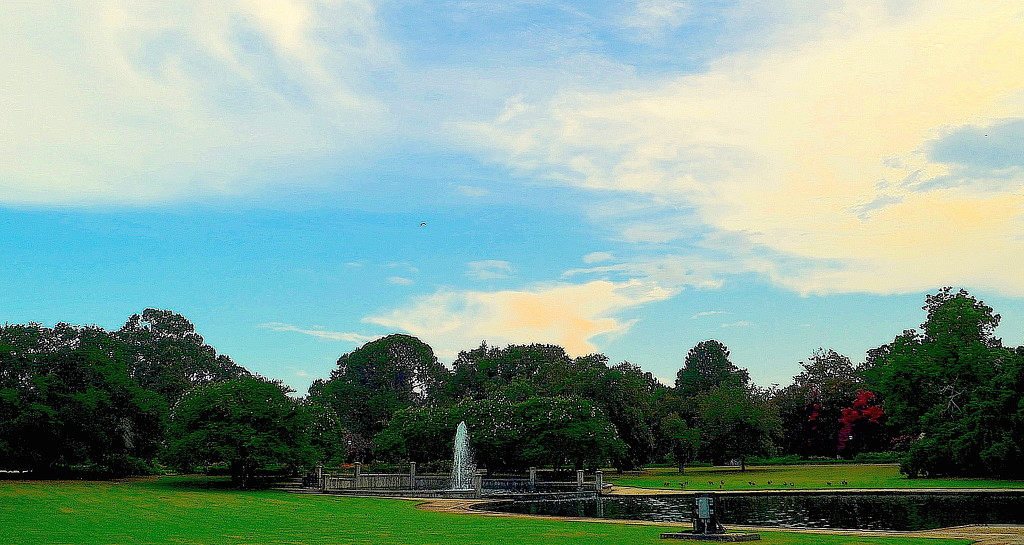 Hampton Park, Charleston, SC by congaree