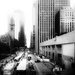 citylife by northy