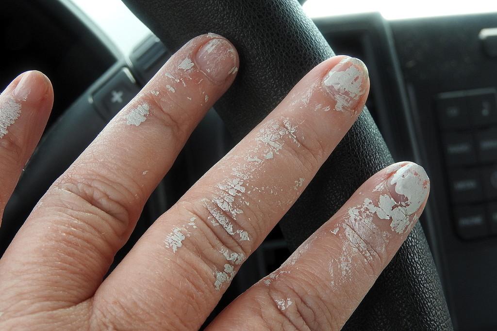 Like my nail polish? by homeschoolmom