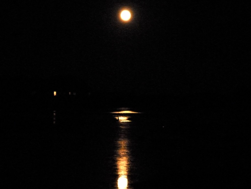 Reflected Moon by 30pics4jackiesdiamond