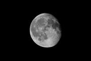1st Jul 2018 - The Moon