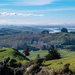 Winter in the Waikato by yorkshirekiwi