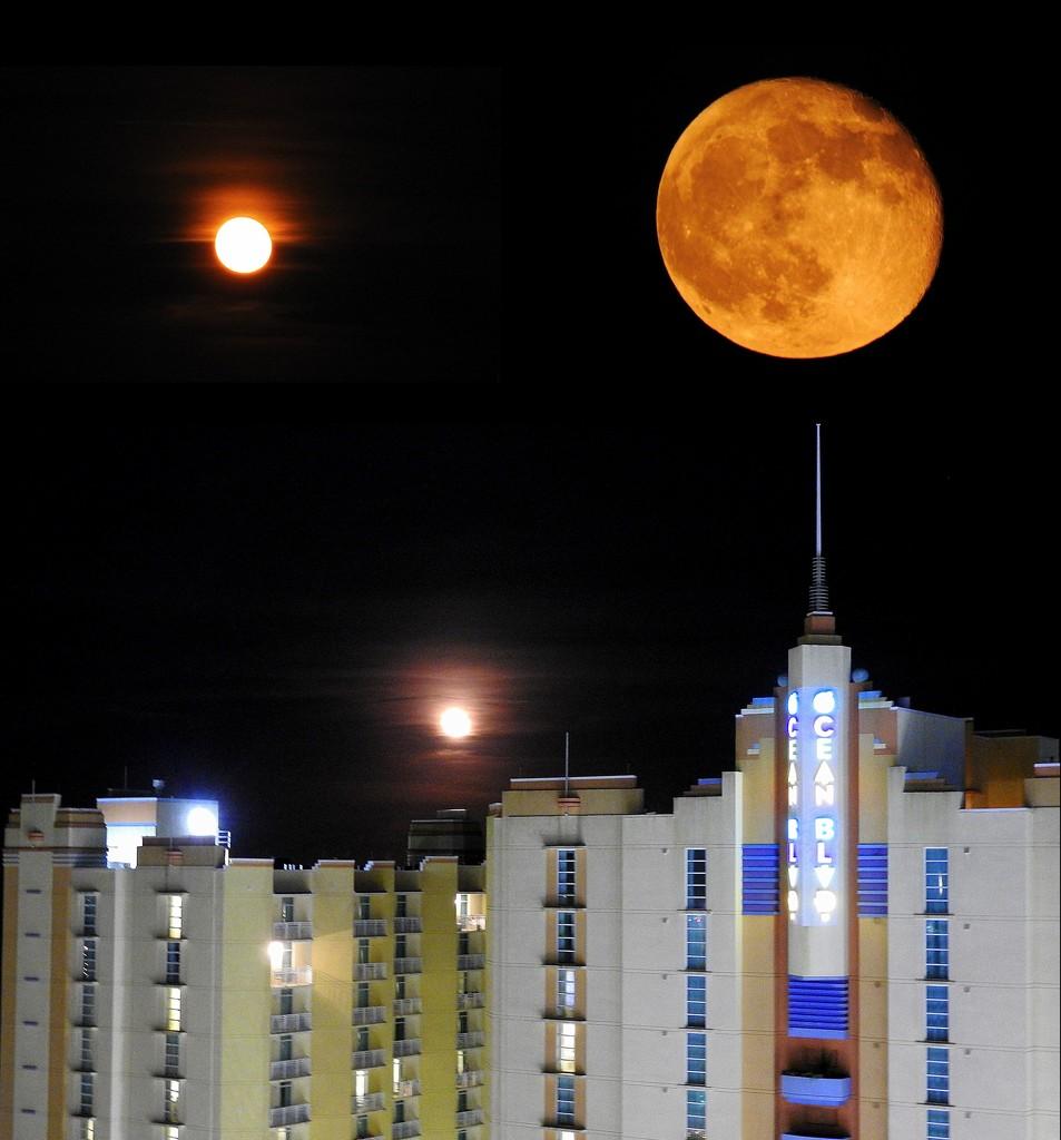Moon over Myrtle Beach by homeschoolmom