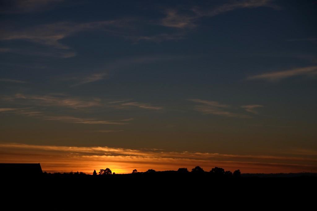 Dawn at 8am by maggiemae