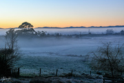 4th Jul 2018 - Frost and Mist!